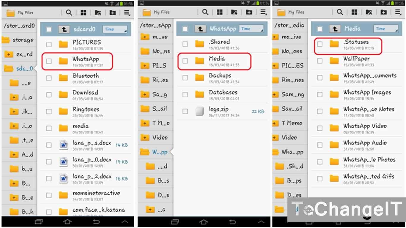 download video status whatsapp